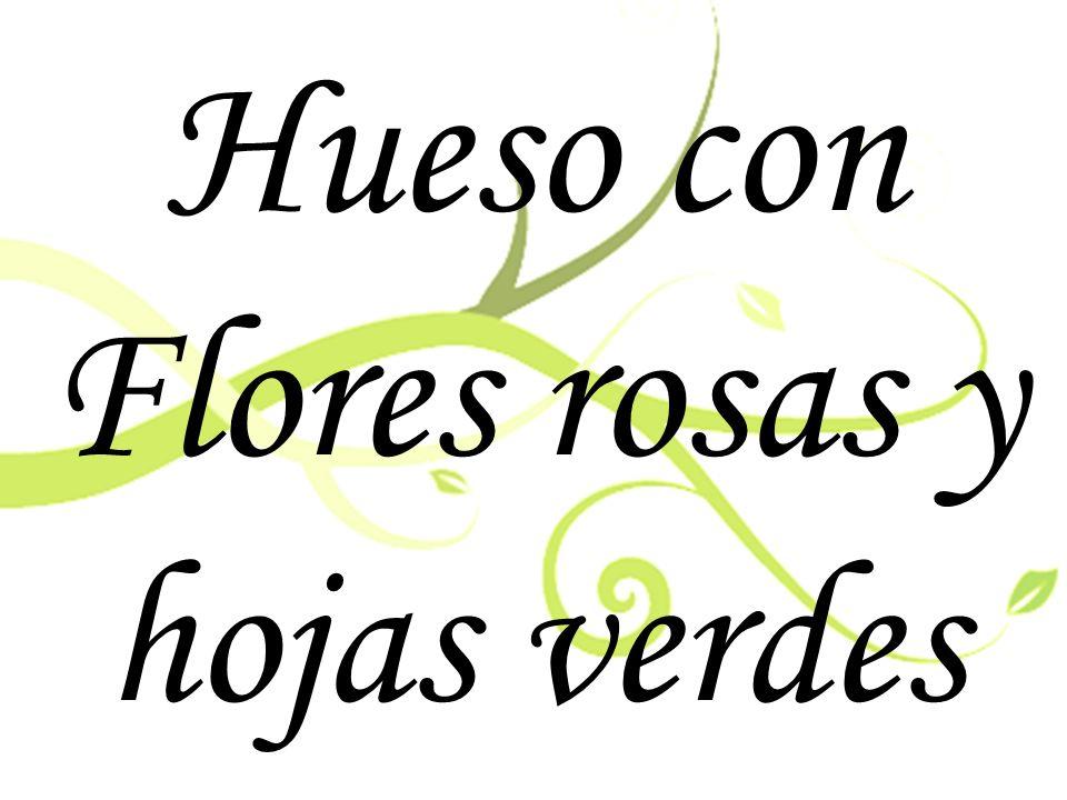 Hueso con Flores rosas y hojas verdes
