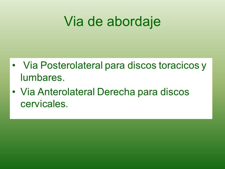Via de abordaje Via Posterolateral para discos toracicos y lumbares. Via Anterolateral Derecha para discos cervicales.
