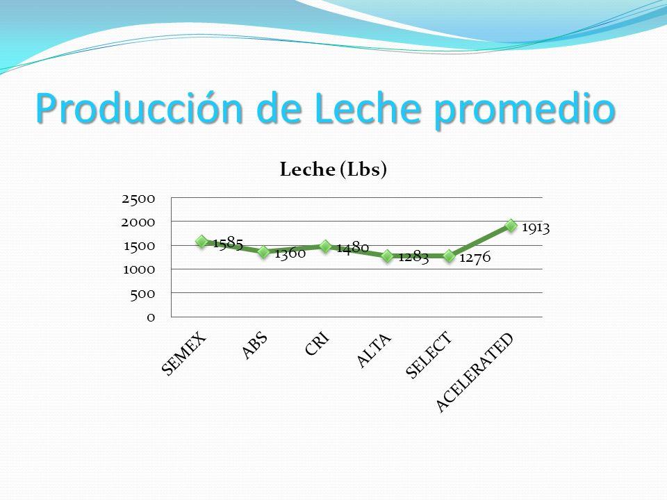 Producción de Leche promedio