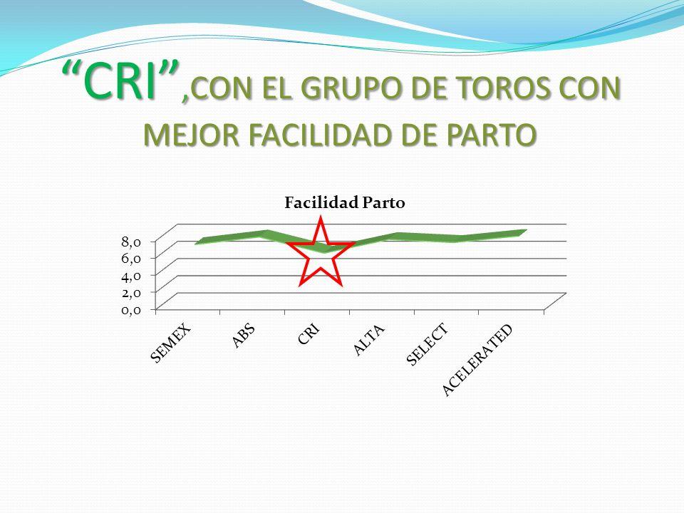 CRI,CON EL GRUPO DE TOROS CON MEJOR FACILIDAD DE PARTO
