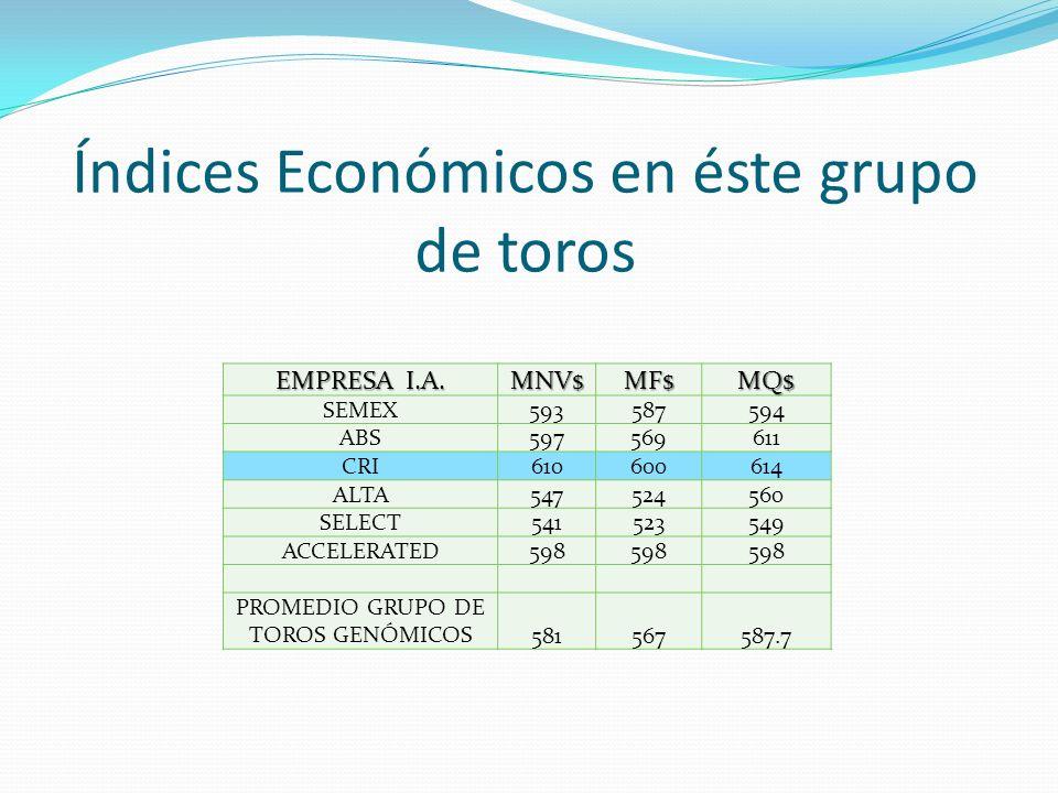 Índices Económicos en éste grupo de toros EMPRESA I.A. MNV$MF$MQ$ SEMEX593587594 ABS597569611 CRI610600614 ALTA547524560 SELECT541523549 ACCELERATED59