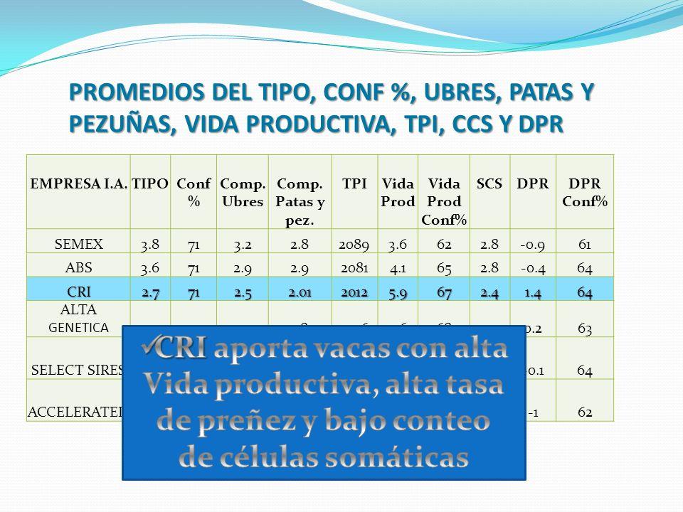PROMEDIOS DEL TIPO, CONF %, UBRES, PATAS Y PEZUÑAS, VIDA PRODUCTIVA, TPI, CCS Y DPR EMPRESA I.A.TIPOConf % Comp. Ubres Comp. Patas y pez. TPIVida Prod