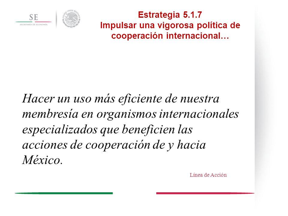 Hacer un uso más eficiente de nuestra membresía en organismos internacionales especializados que beneficien las acciones de cooperación de y hacia Méx