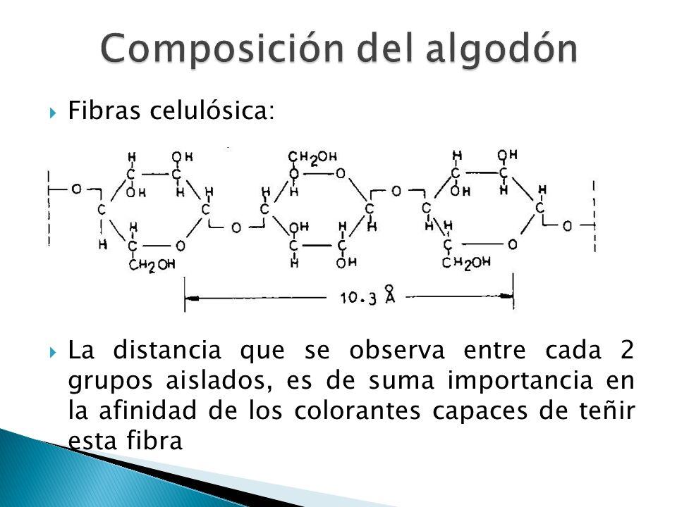 Fibras celulósica: La distancia que se observa entre cada 2 grupos aislados, es de suma importancia en la afinidad de los colorantes capaces de teñir