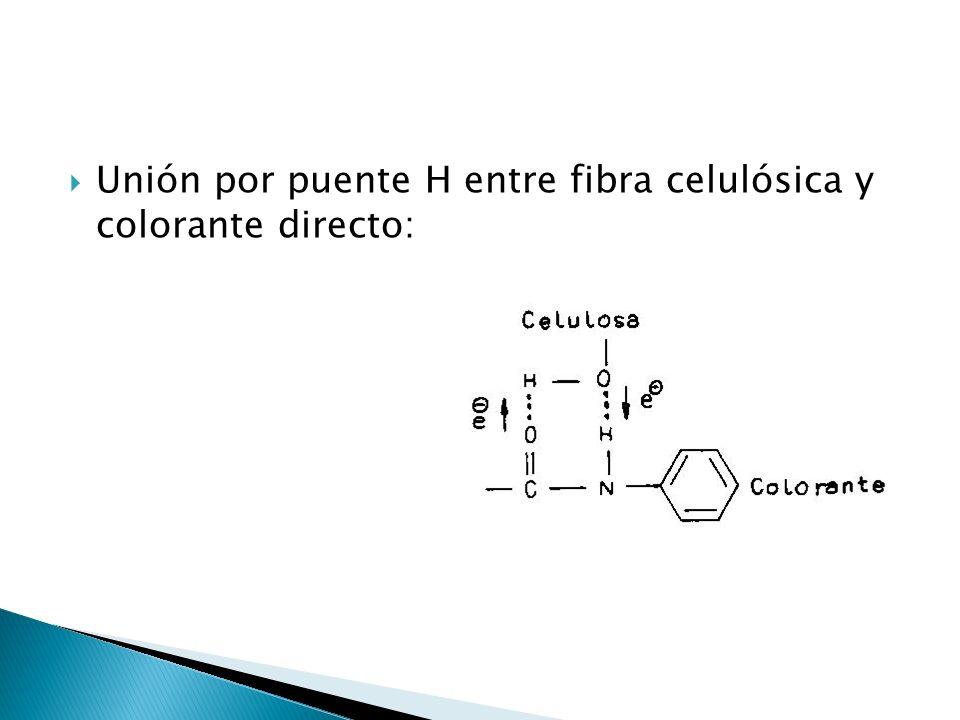 Unión por puente H entre fibra celulósica y colorante directo: