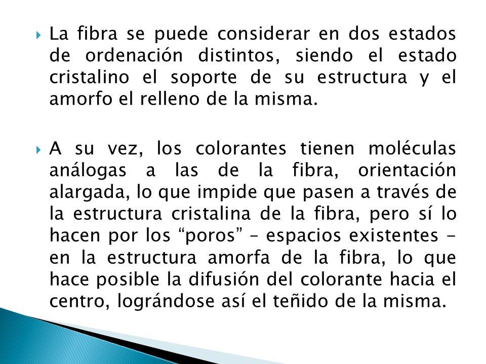 La fibra se puede considerar en dos estados de ordenación distintos, siendo el estado cristalino el soporte de su estructura y el amorfo el relleno de