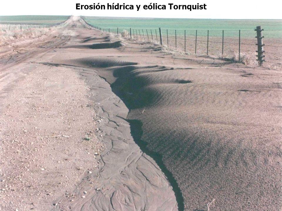 Erosión hídrica y eólica Tornquist