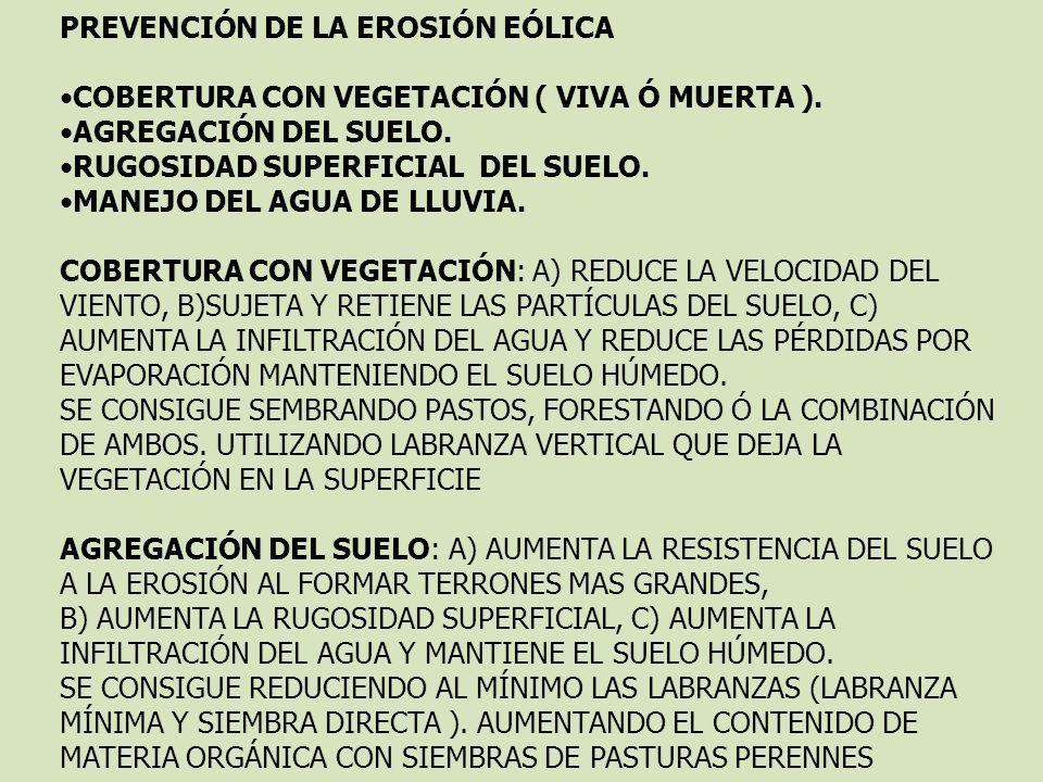PREVENCIÓN DE LA EROSIÓN EÓLICA COBERTURA CON VEGETACIÓN ( VIVA Ó MUERTA ). AGREGACIÓN DEL SUELO. RUGOSIDAD SUPERFICIAL DEL SUELO. MANEJO DEL AGUA DE