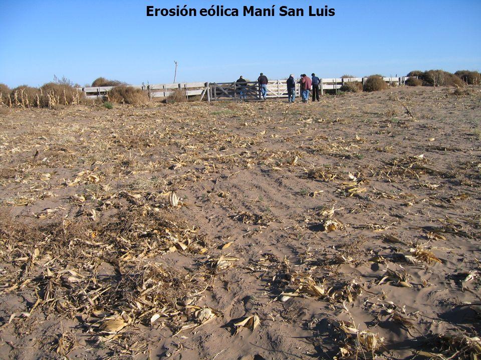 Erosión eólica Maní San Luis