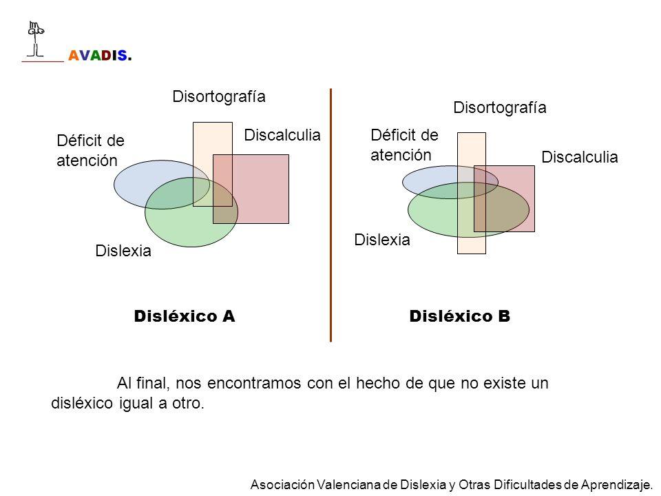 Dislexia Discalculia Déficit de atención Disortografía Dislexia Discalculia Déficit de atención Disortografía Disléxico ADisléxico B Al final, nos enc