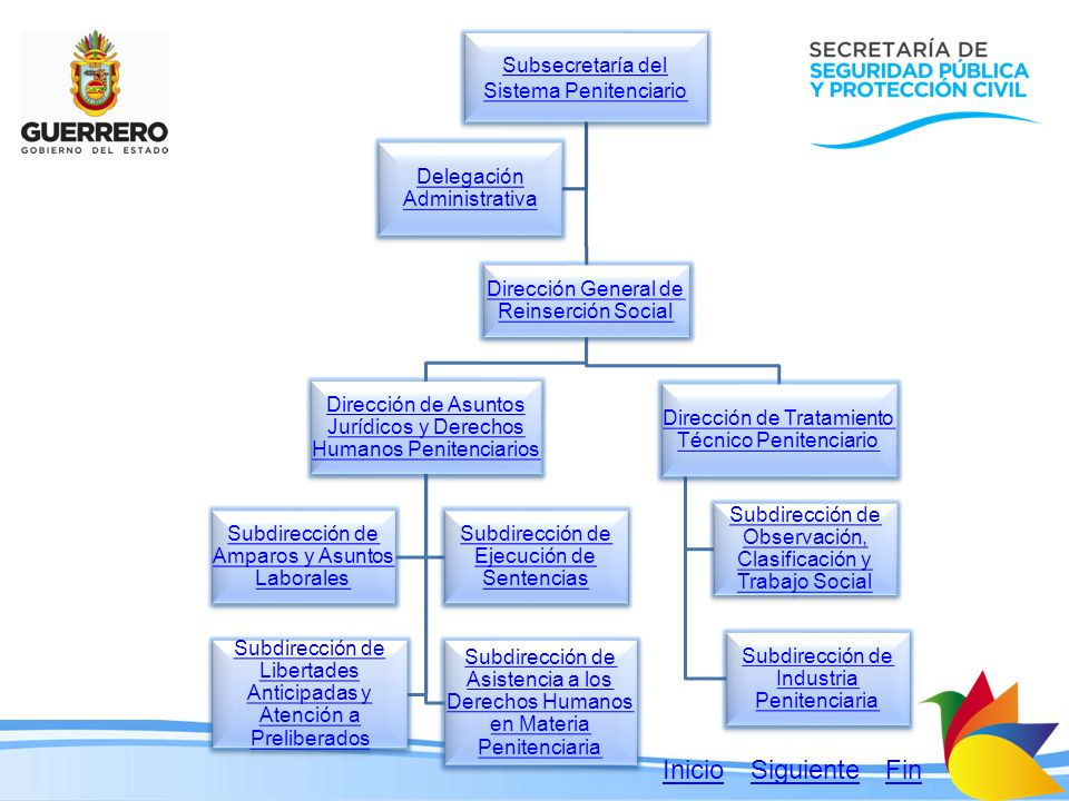 Subsecretaría del Sistema Penitenciario Subsecretaría del Sistema Penitenciario Dirección General de Reinserción Social Dirección General de Reinserci