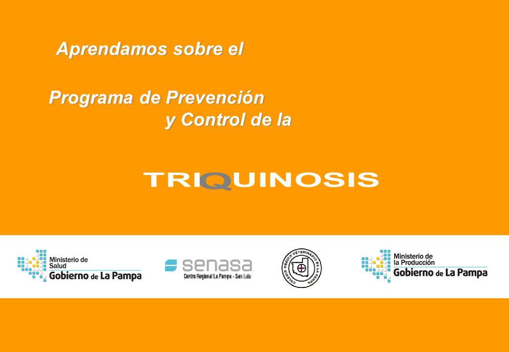 Realizado por Ricardo Bruno – Marzo de 2010 Aprendamos sobre el Aprendamos sobre el Programa de Prevención y Control de la Programa de Prevención y Control de la