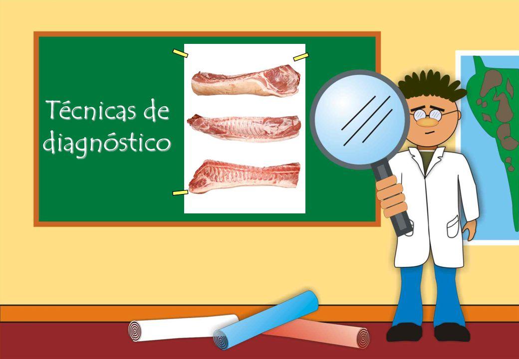 Realizado por Ricardo Bruno – Marzo de 2010 Técnicas de diagnóstico