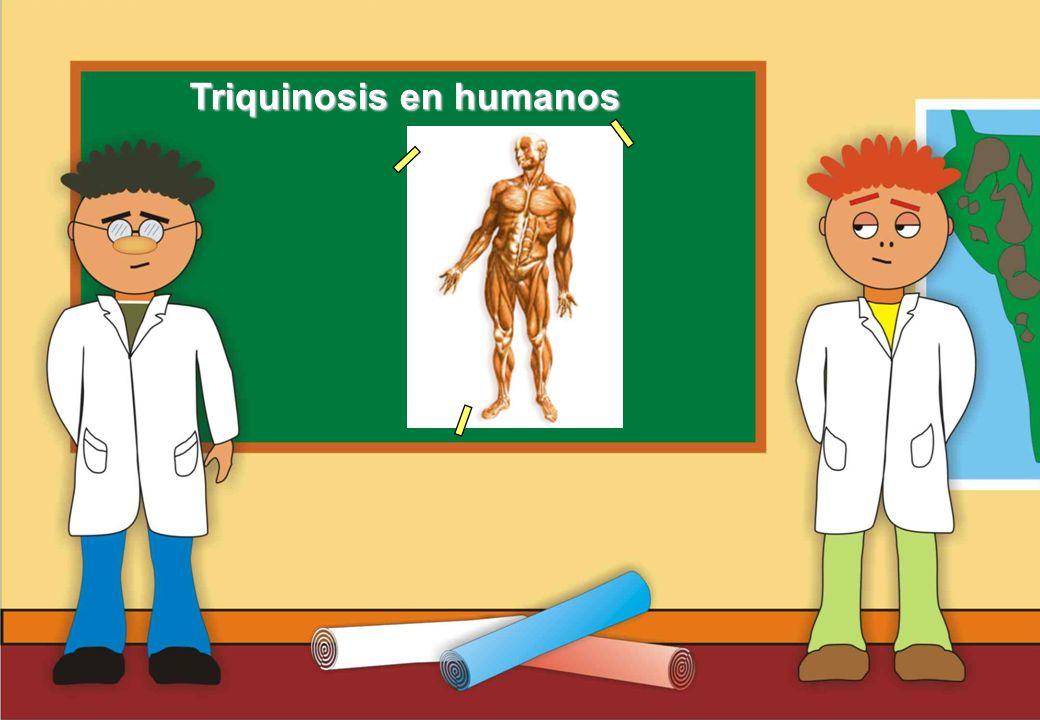 Realizado por Ricardo Bruno – Marzo de 2010 Triquinosis en humanos