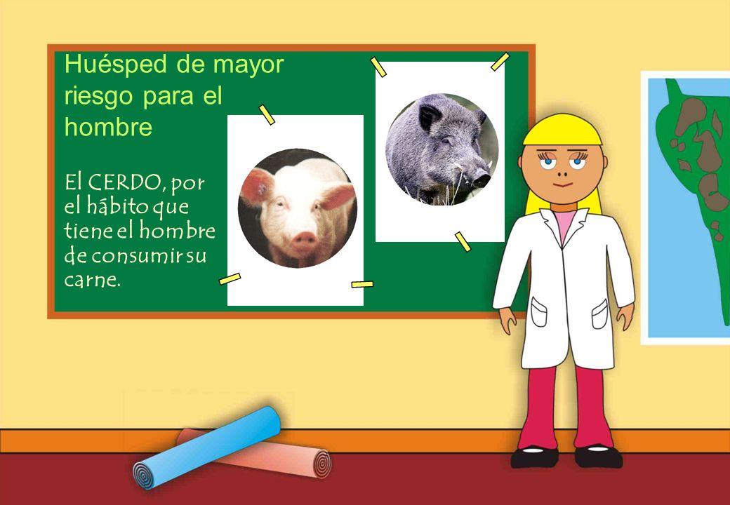 Realizado por Ricardo Bruno – Marzo de 2010 El CERDO, por el hábito que tiene el hombre de consumir su carne.