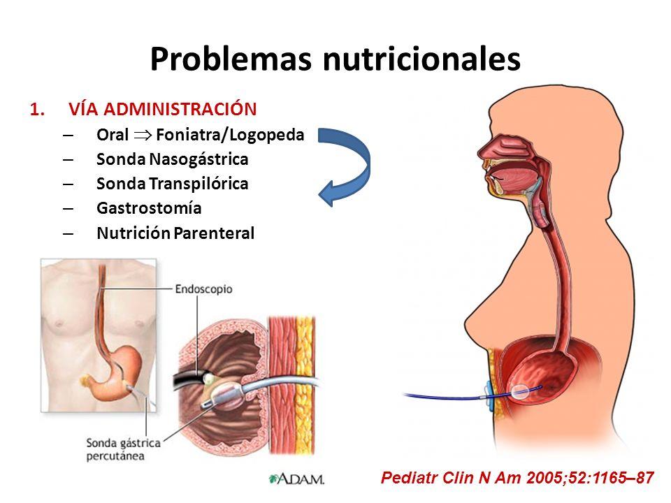 Problemas nutricionales 1.VÍA ADMINISTRACIÓN – Oral Foniatra/Logopeda – Sonda Nasogástrica – Sonda Transpilórica – Gastrostomía – Nutrición Parenteral