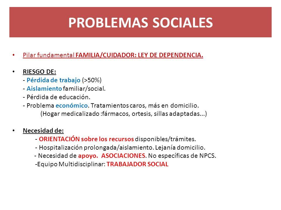 PROBLEMAS SOCIALES Pilar fundamental FAMILIA/CUIDADOR: LEY DE DEPENDENCIA. RIESGO DE: - Pérdida de trabajo (>50%) - Aislamiento familiar/social. - Pér
