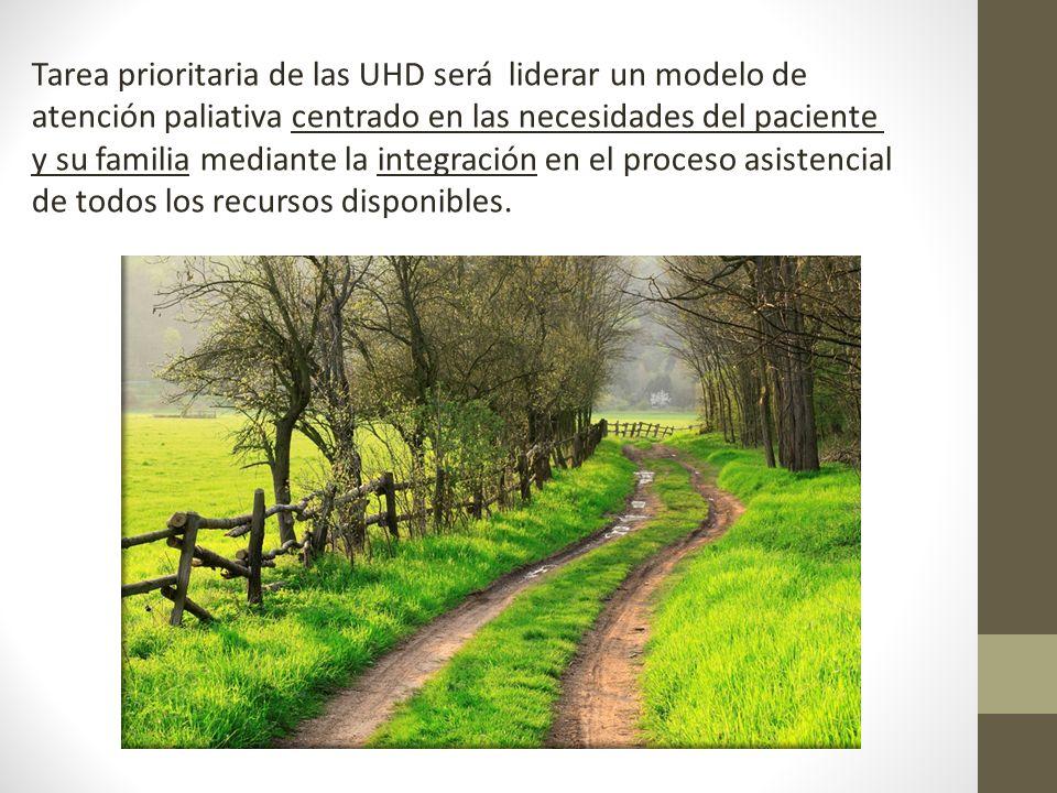 Tarea prioritaria de las UHD será liderar un modelo de atención paliativa centrado en las necesidades del paciente y su familia mediante la integració
