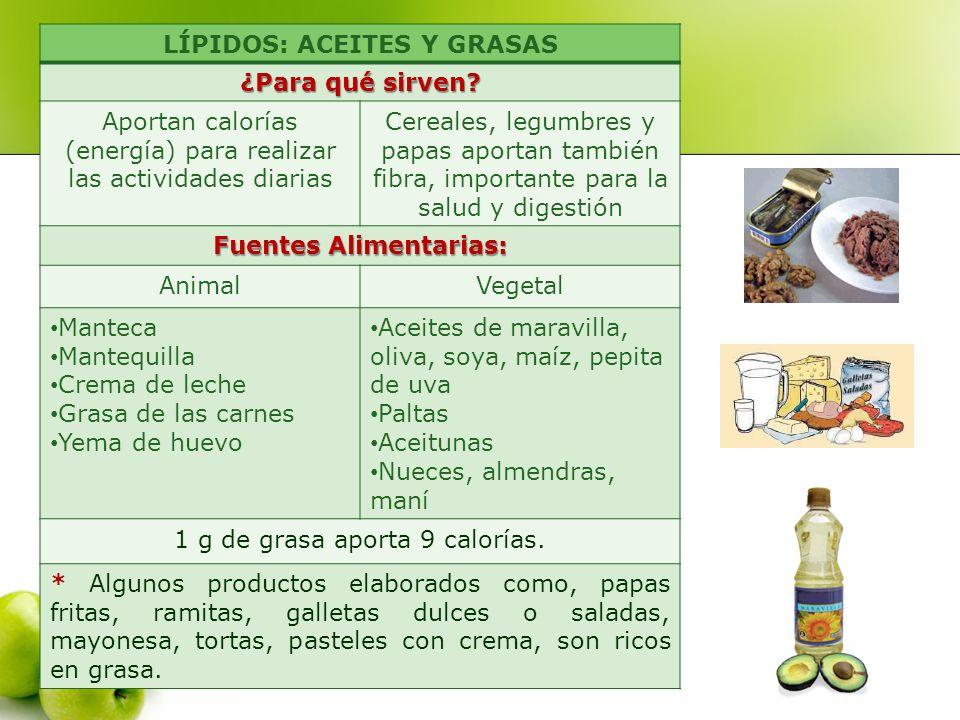 LÍPIDOS: ACEITES Y GRASAS ¿Para qué sirven? Aportan calorías (energía) para realizar las actividades diarias Cereales, legumbres y papas aportan tambi