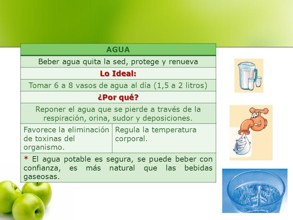 AGUA Beber agua quita la sed, protege y renueva Lo Ideal: Tomar 6 a 8 vasos de agua al día (1,5 a 2 litros) ¿Por qué? Reponer el agua que se pierde a