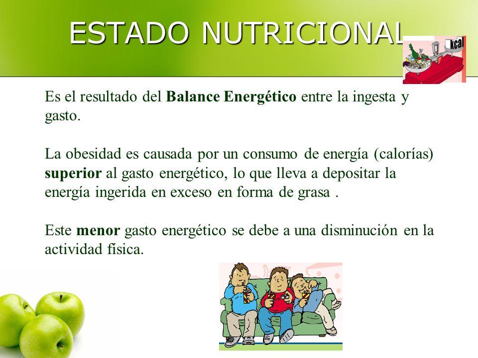 ESTADO NUTRICIONAL Es el resultado del Balance Energético entre la ingesta y gasto. La obesidad es causada por un consumo de energía (calorías) superi