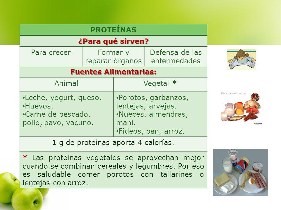 PROTEÍNAS ¿Para qué sirven? Para crecerFormar y reparar órganos Defensa de las enfermedades Fuentes Alimentarias: AnimalVegetal * Leche, yogurt, queso