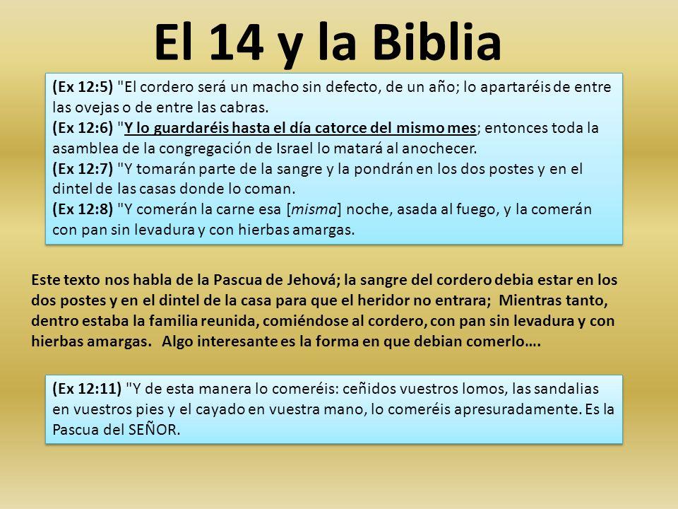 El 14 y la Biblia Este año es un año de Comunión y consagración; preparados y obedeciendo lo que nos mande nuestro Dios y Padre; pero también preparados para su inminente regreso.