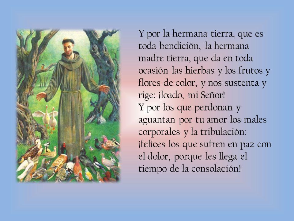 Y por la hermana tierra, que es toda bendición, la hermana madre tierra, que da en toda ocasión las hierbas y los frutos y flores de color, y nos sustenta y rige: ¡loado, mi Señor.