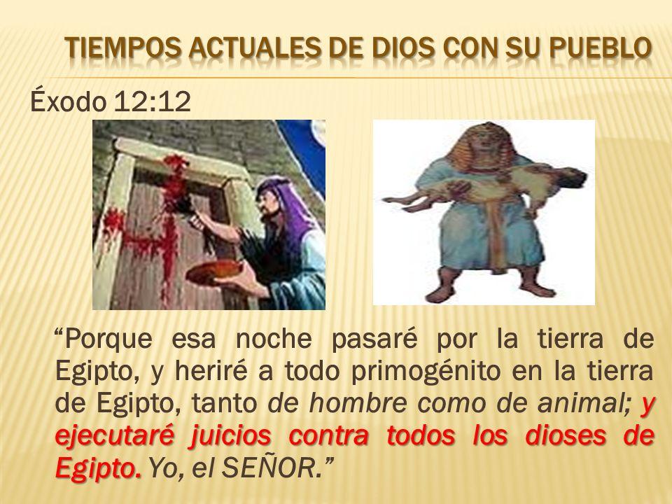 Éxodo 12:12 y ejecutaré juicios contra todos los dioses de Egipto. Porque esa noche pasaré por la tierra de Egipto, y heriré a todo primogénito en la