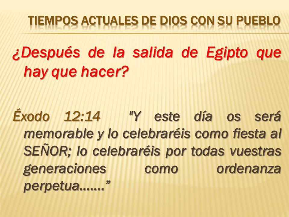 ¿Después de la salida de Egipto que hay que hacer? Éxodo 12:14