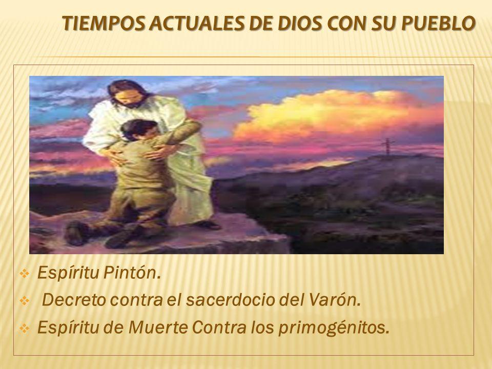 Espíritu Pintón.Decreto contra el sacerdocio del Varón.