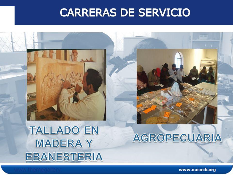 statement Impacto 1 statement Impacto 2 statement Impacto3 Cerca del 90 % de los estudiantes titulados se encuentran trabajando en instituciones de desarrollo (Alcaldías, INIAF, GTZ, ONGs, PROINPA, FAO y otros.).