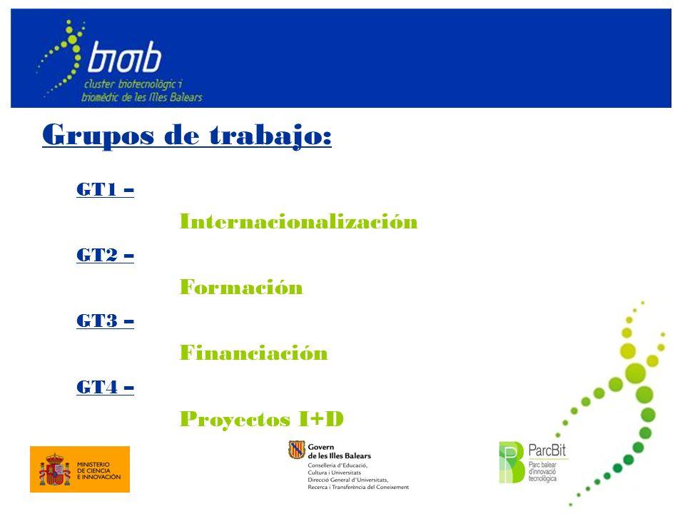 Grupos de trabajo: GT1 – Internacionalización GT2 – Formación GT3 – Financiación GT4 – Proyectos I+D