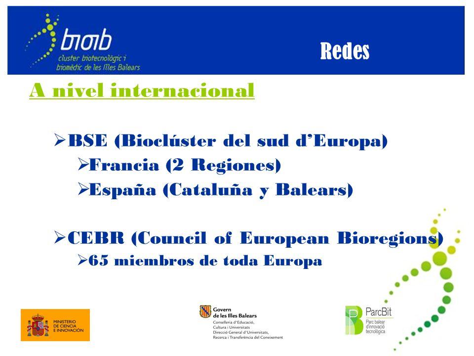 A nivel internacional BSE (Bioclúster del sud dEuropa) Francia (2 Regiones) España (Cataluña y Balears) CEBR (Council of European Bioregions) 65 miembros de toda Europa Redes