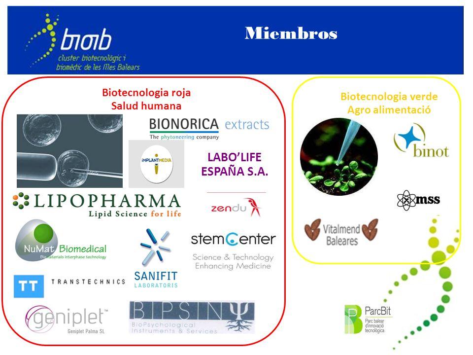 Principales actores Promotor Proyectos Planes implantación y crecimiento en España Colaboradores Asociaciones de PE/VC Redes de BA e incubadoras Instituciones públicas relacionadas con los objetivos de la Red Agencias de promoción de inversiones Asoc.