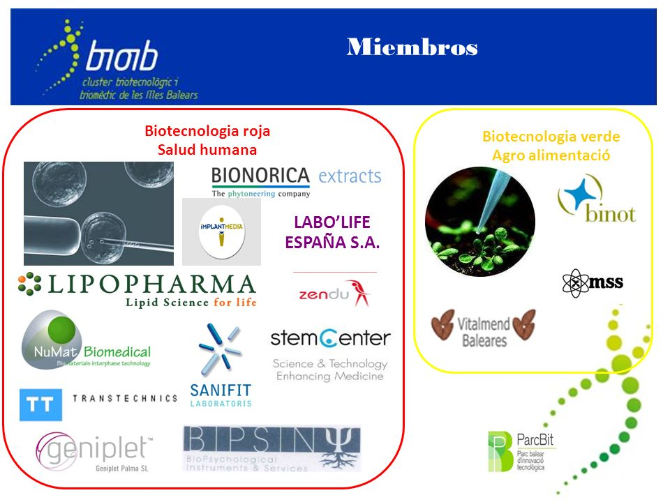 Miembros Biotecnologia roja Salud humana LABOLIFE ESPAÑA S.A. Biotecnologia verde Agro alimentació