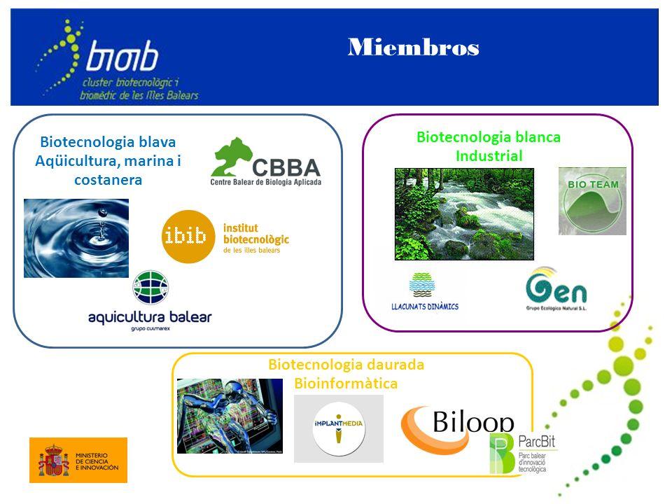 Biotecnologia blava Aqüicultura, marina i costanera Biotecnologia daurada Bioinformàtica Biotecnologia blanca Industrial Miembros