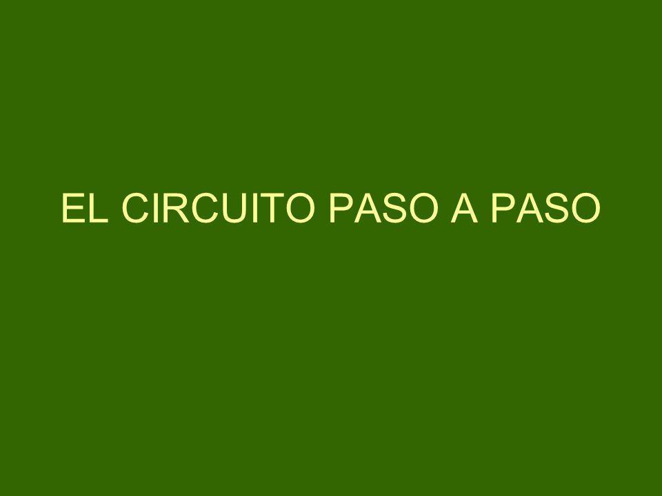 EL CIRCUITO PASO A PASO