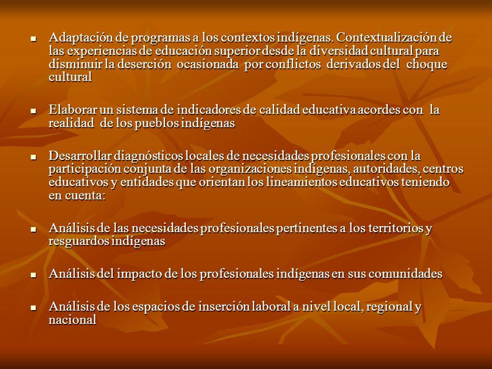 Adaptación de programas a los contextos indígenas.