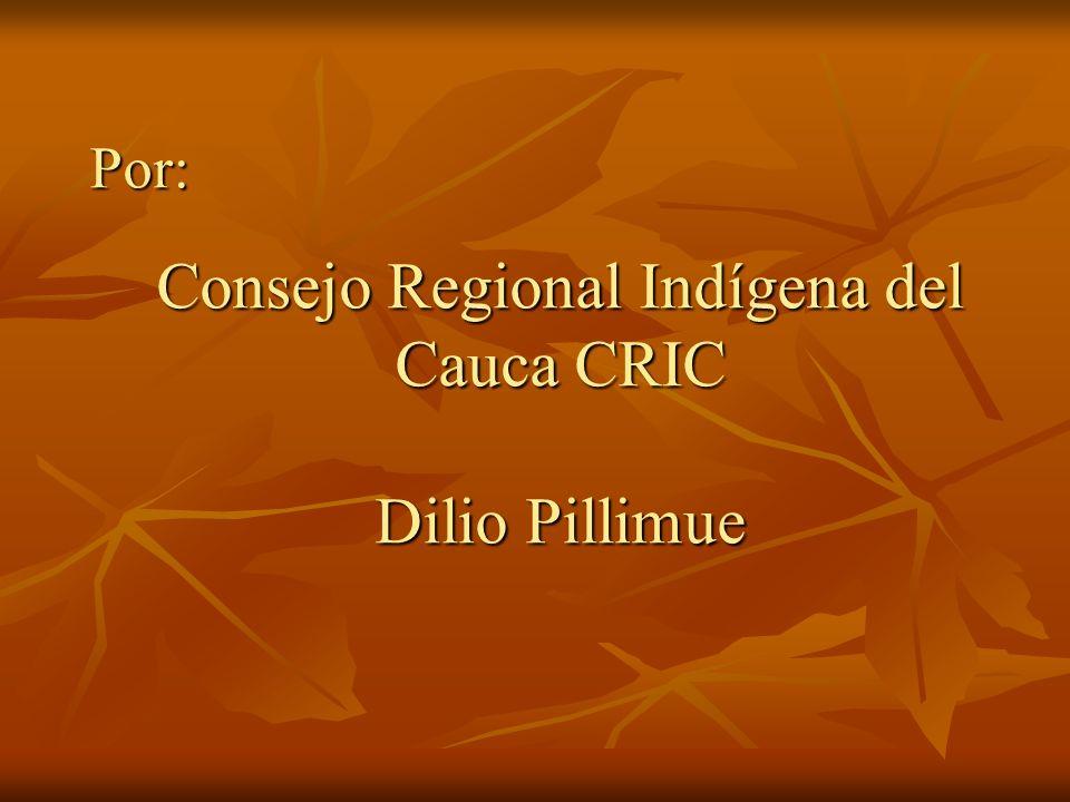Consejo Regional Indígena del Cauca CRIC Dilio Pillimue Por: