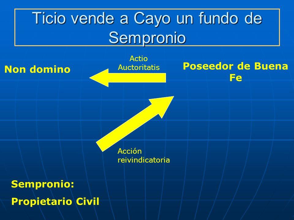 Ticio vende a Cayo un fundo de Sempronio Non domino Poseedor de Buena Fe Acción reivindicatoria Sempronio: Propietario Civil Actio Auctoritatis
