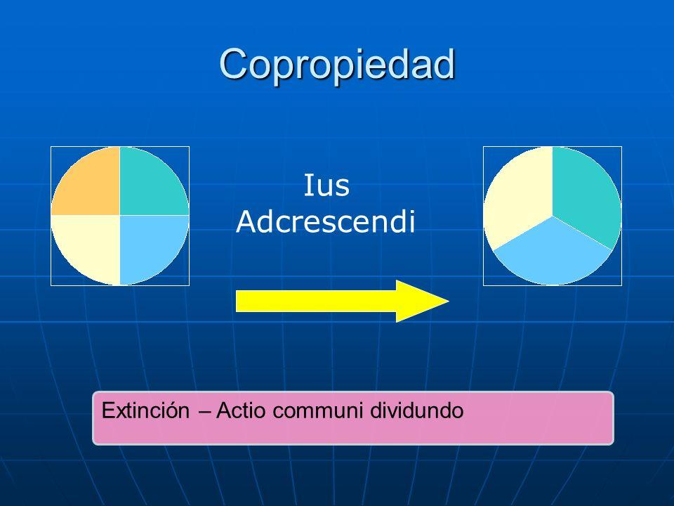 Copropiedad Extinción – Actio communi dividundo Ius Adcrescendi