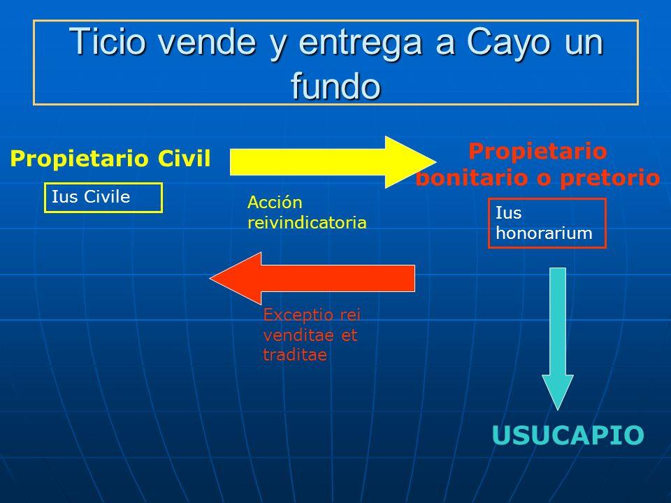 Ticio vende y entrega a Cayo un fundo Propietario Civil Propietario bonitario o pretorio Ius Civile Ius honorarium Acción reivindicatoria Exceptio rei