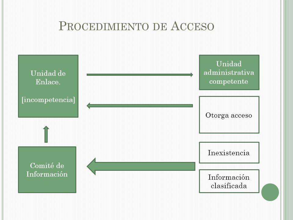P RINCIPIOS B ÁSICOS DEL P ROCEDIMIENTO DE A CCESO Máxima publicidad.