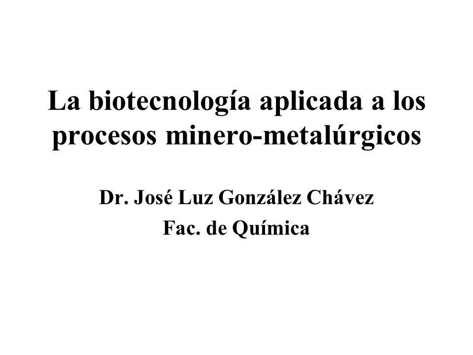 La biotecnología aplicada a los procesos minero-metalúrgicos Dr. José Luz González Chávez Fac. de Química