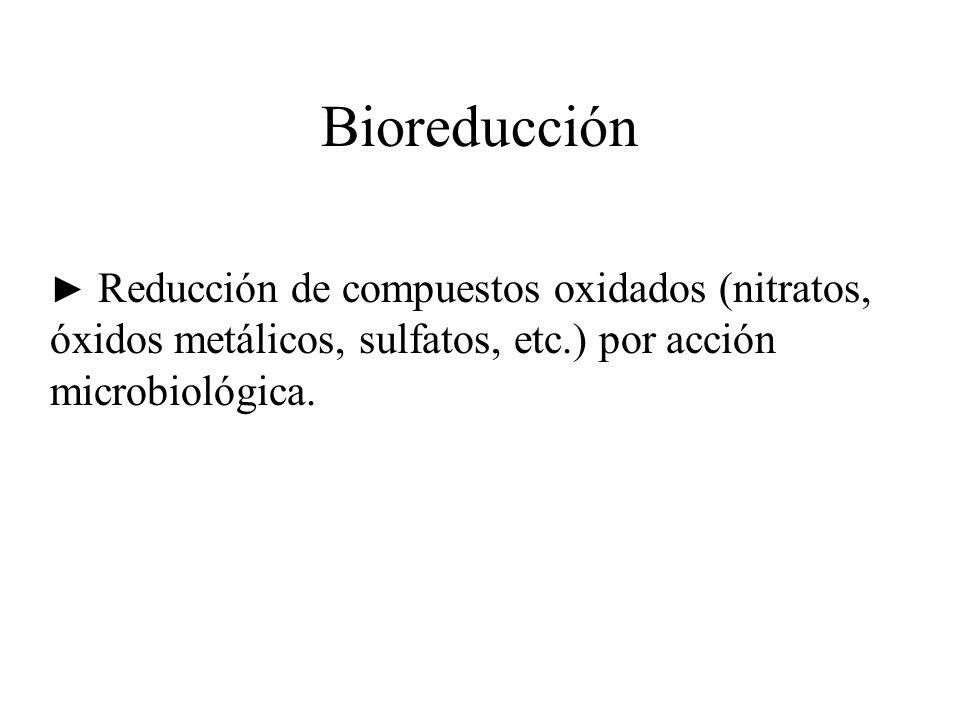 Bioreducción Reducción de compuestos oxidados (nitratos, óxidos metálicos, sulfatos, etc.) por acción microbiológica.