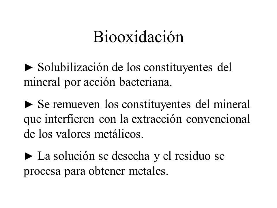 Biooxidación Solubilización de los constituyentes del mineral por acción bacteriana. Se remueven los constituyentes del mineral que interfieren con la