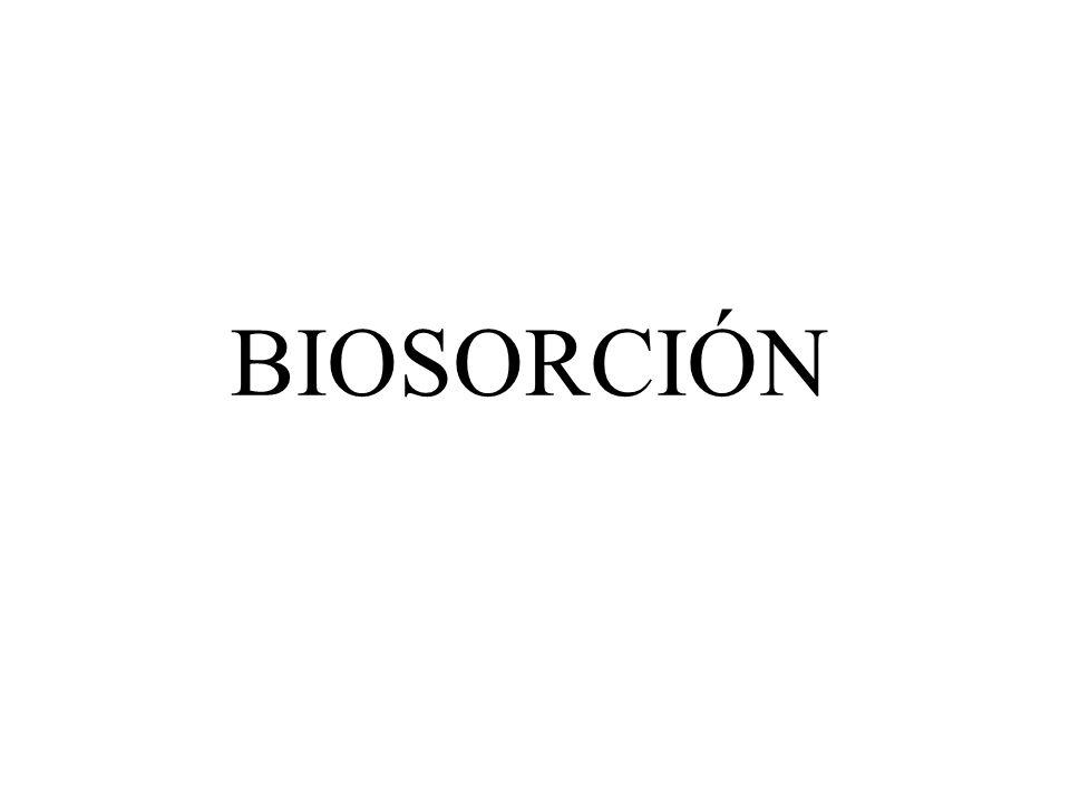 BIOSORCIÓN