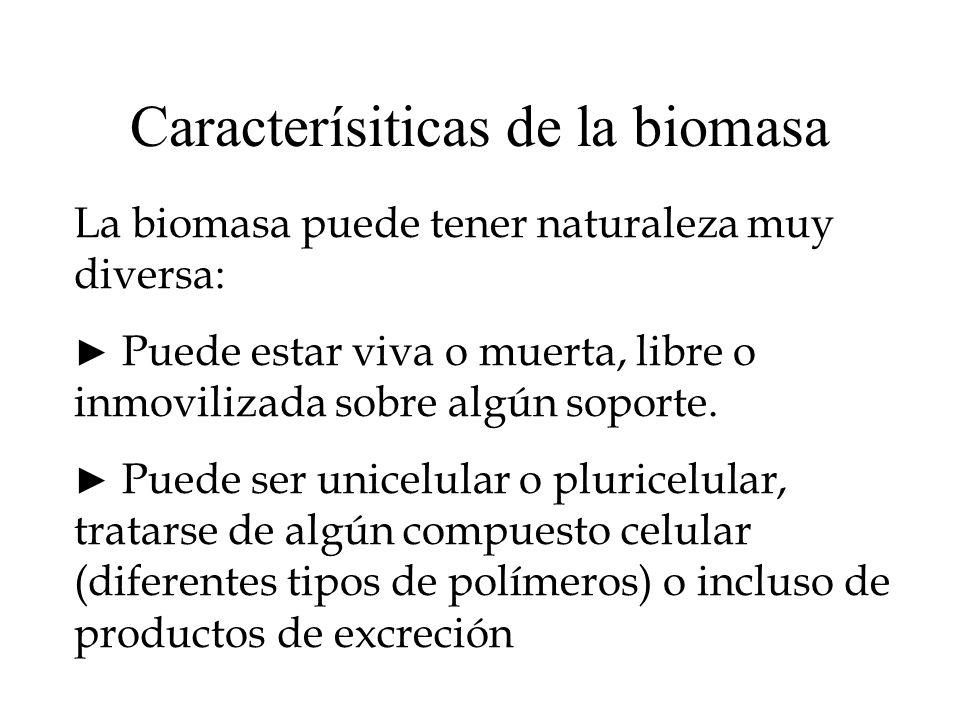 Caracterísiticas de la biomasa La biomasa puede tener naturaleza muy diversa: Puede estar viva o muerta, libre o inmovilizada sobre algún soporte. Pue