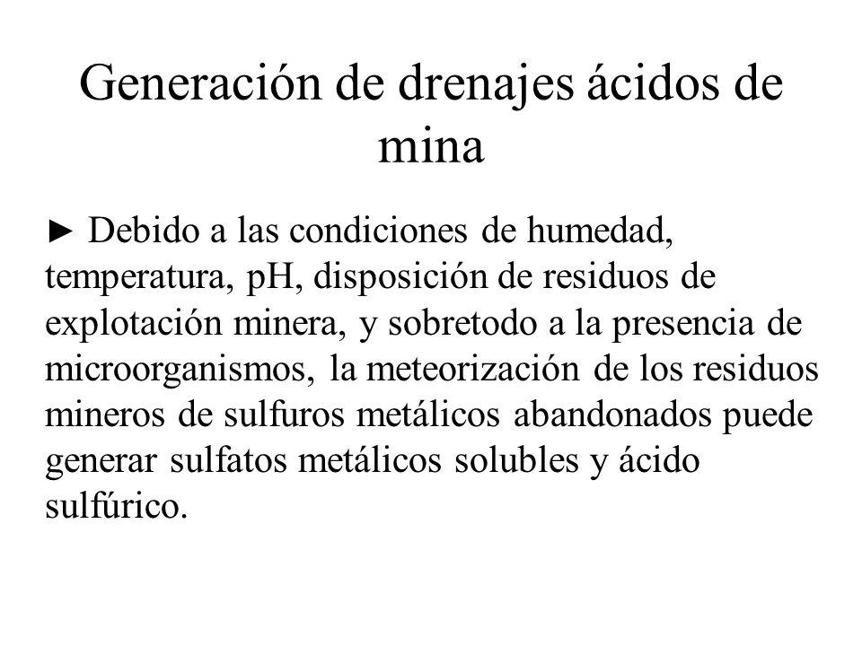 Generación de drenajes ácidos de mina Debido a las condiciones de humedad, temperatura, pH, disposición de residuos de explotación minera, y sobretodo